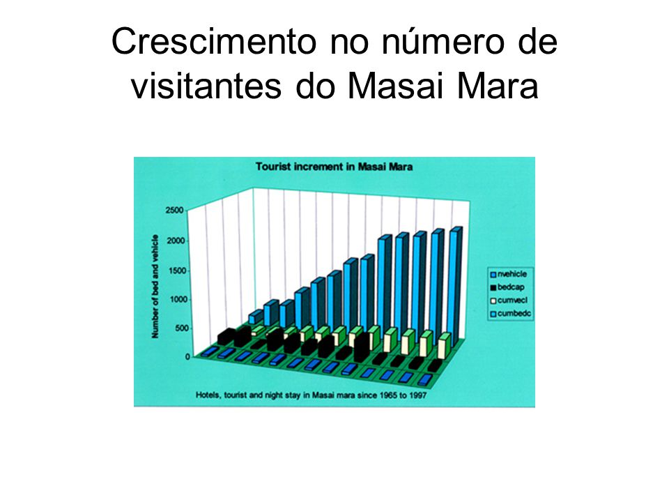 Crescimento no número de visitantes do Masai Mara