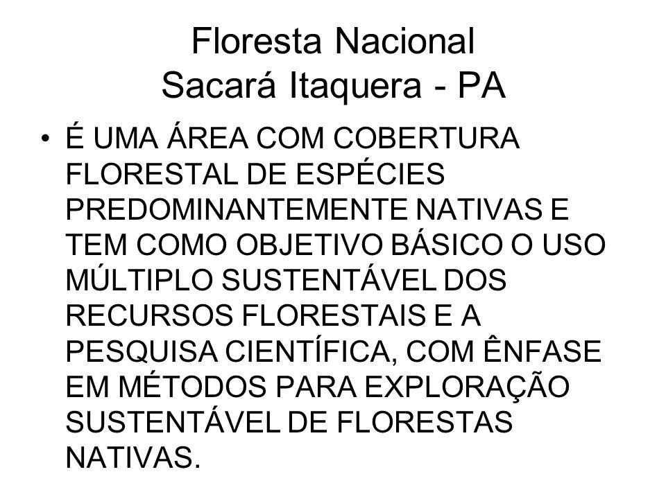 Floresta Nacional Sacará Itaquera - PA