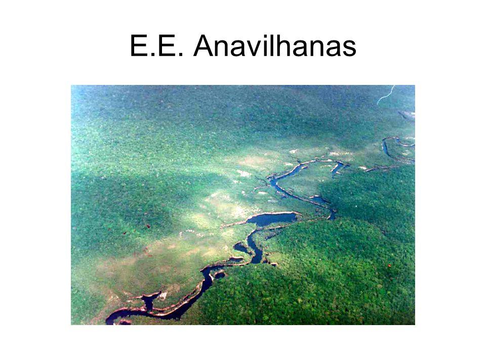 E.E. Anavilhanas