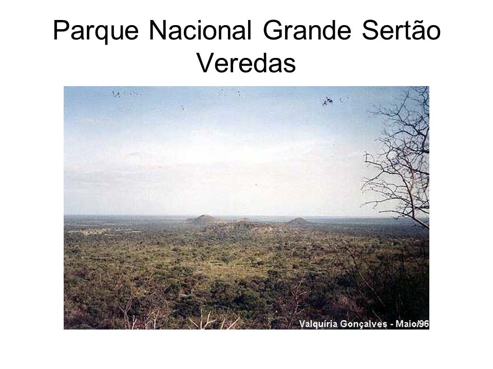 Parque Nacional Grande Sertão Veredas