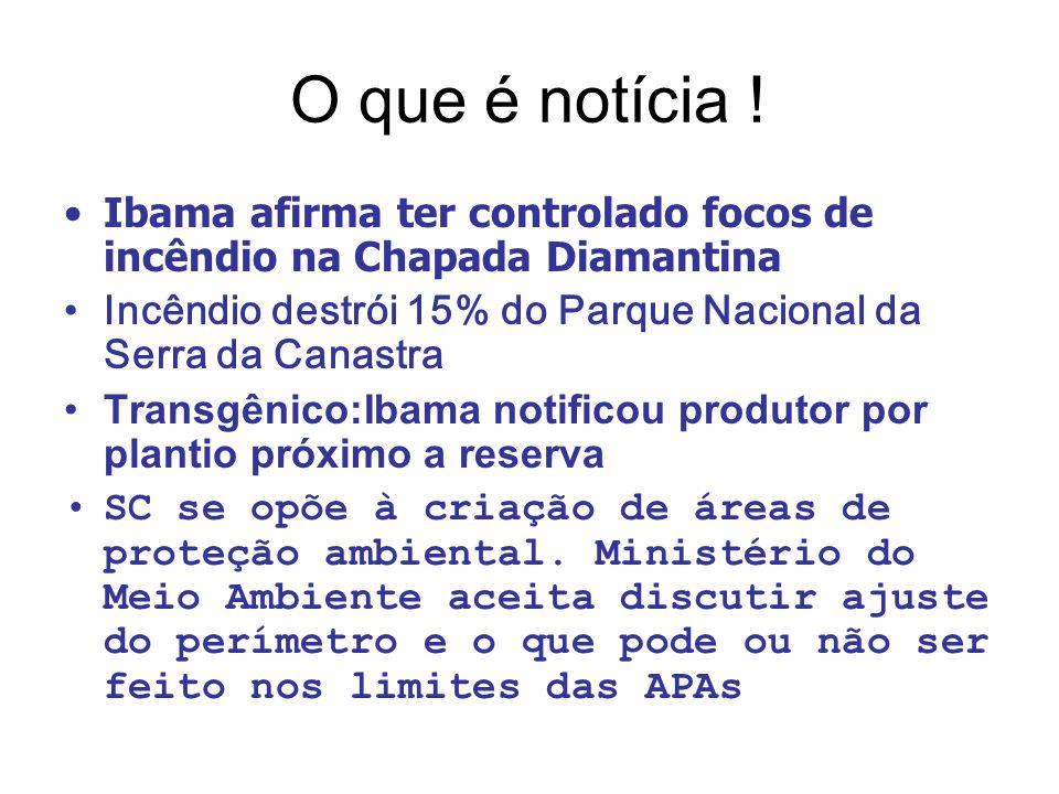 O que é notícia ! Ibama afirma ter controlado focos de incêndio na Chapada Diamantina. Incêndio destrói 15% do Parque Nacional da Serra da Canastra.