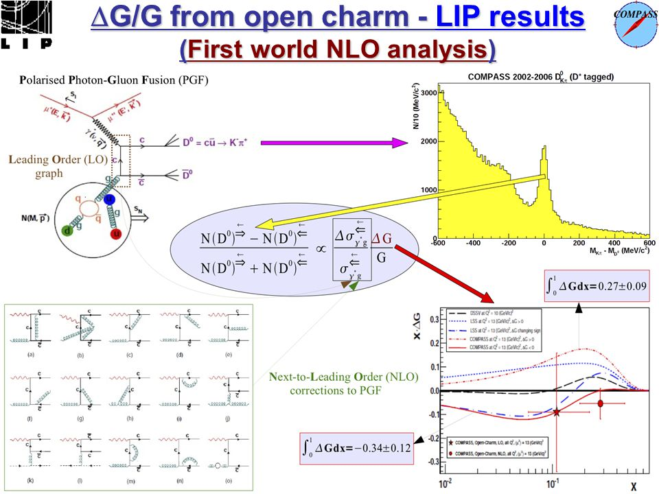 G/G from open charm - LIP results (First world NLO analysis)