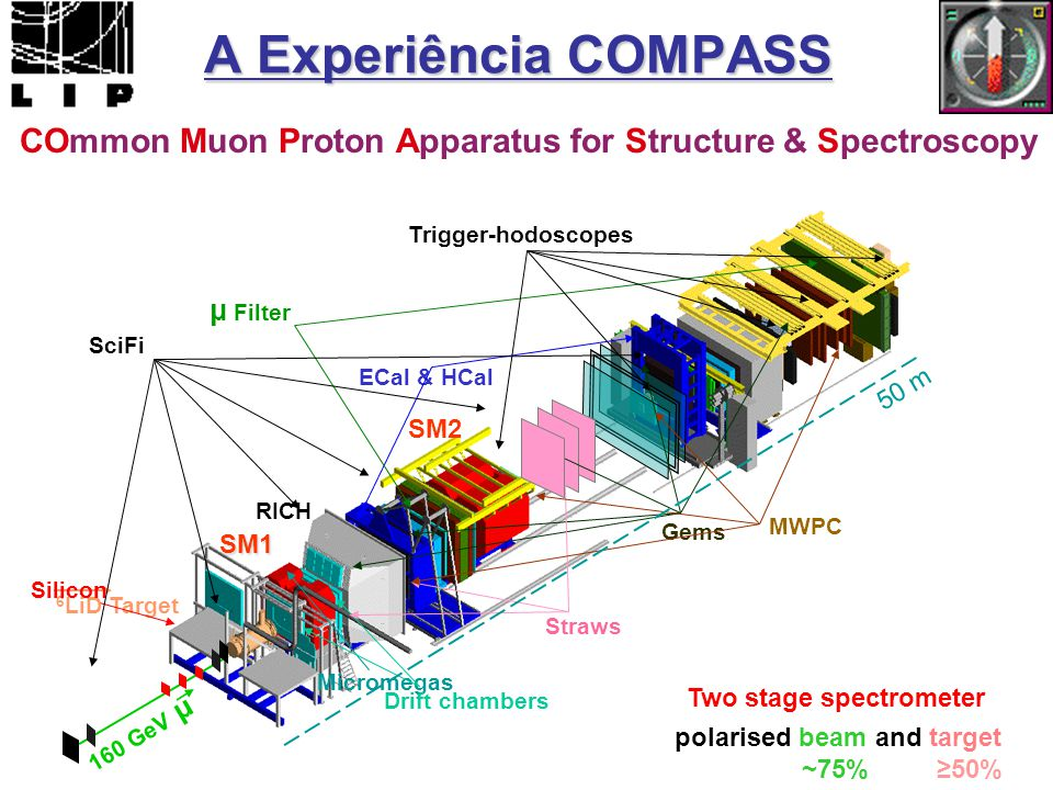 A Experiência COMPASS COmmon Muon Proton Apparatus for Structure & Spectroscopy. Trigger-hodoscopes.