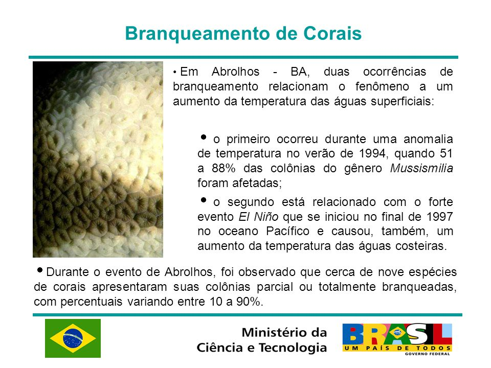 Branqueamento de Corais