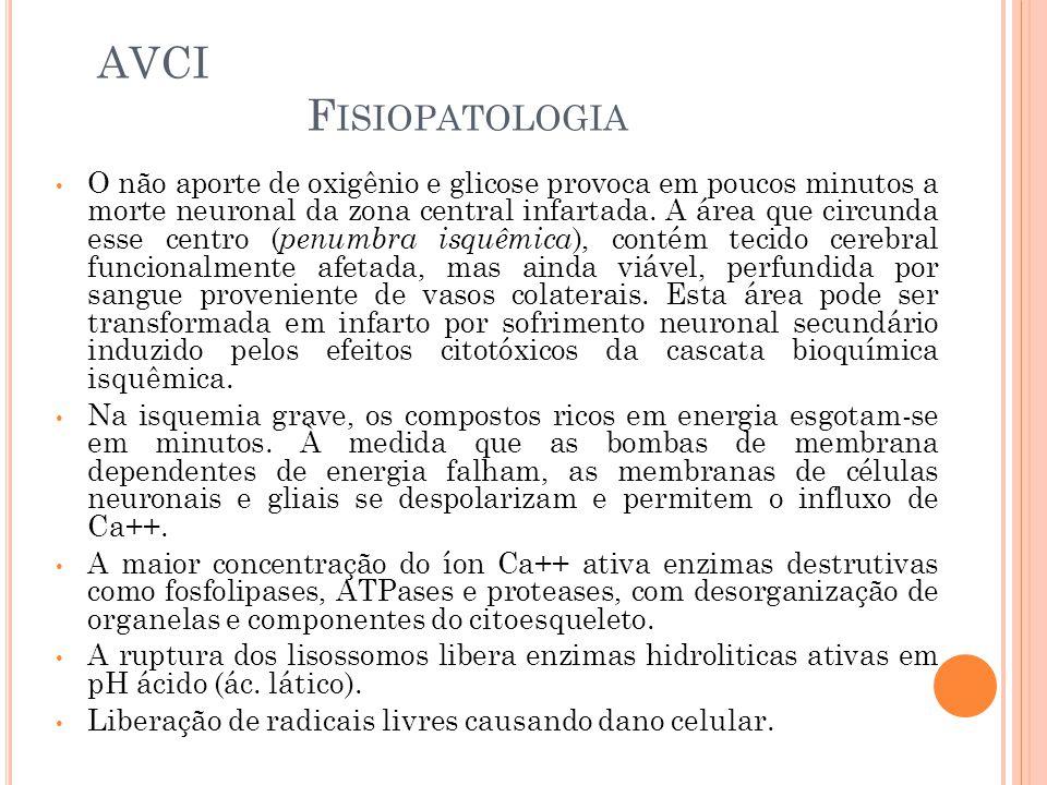 AVCI Fisiopatologia