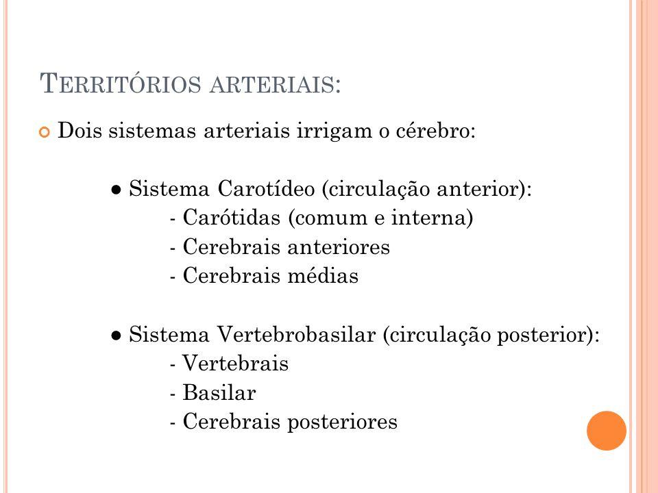 Territórios arteriais: