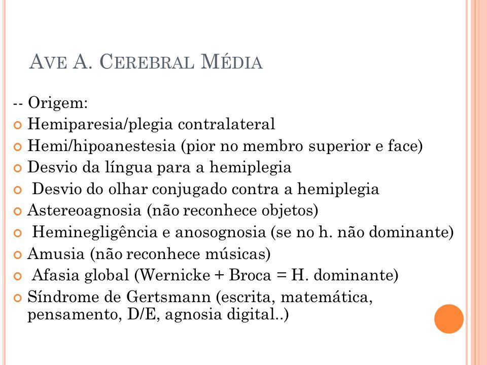 Ave A. Cerebral Média -- Origem: Hemiparesia/plegia contralateral