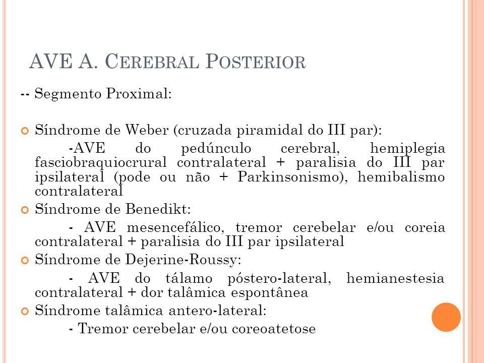 AVE A. Cerebral Posterior