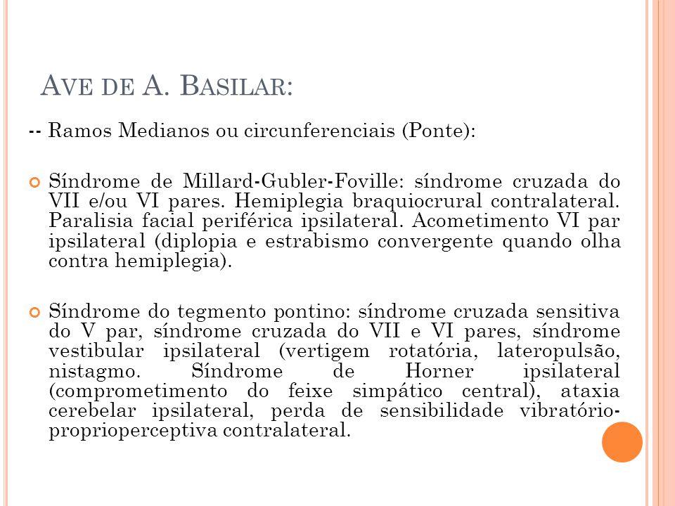 Ave de A. Basilar: -- Ramos Medianos ou circunferenciais (Ponte):