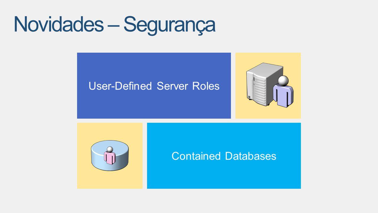 User-Defined Server Roles