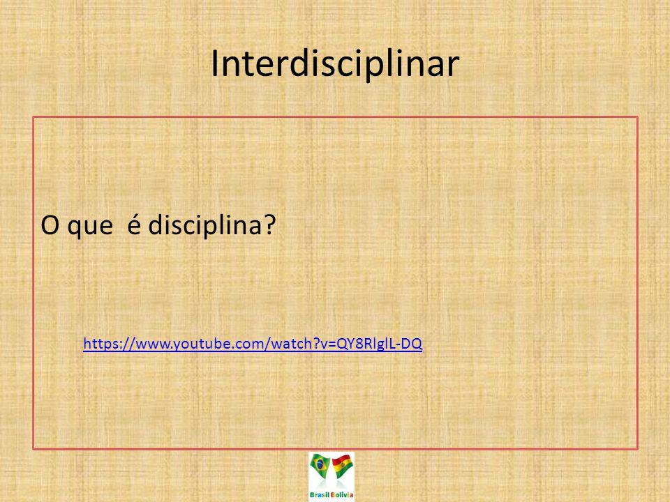 Interdisciplinar O que é disciplina