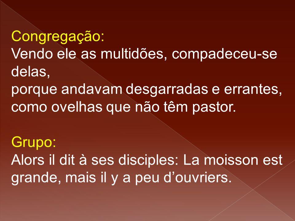 Congregação: Vendo ele as multidões, compadeceu-se delas, porque andavam desgarradas e errantes, como ovelhas que não têm pastor.