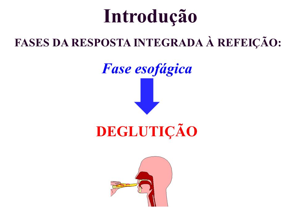 FASES DA RESPOSTA INTEGRADA À REFEIÇÃO: