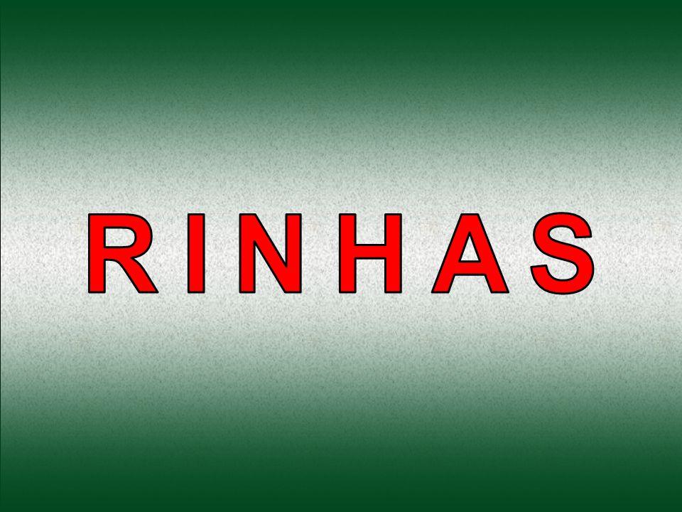 RINHAS