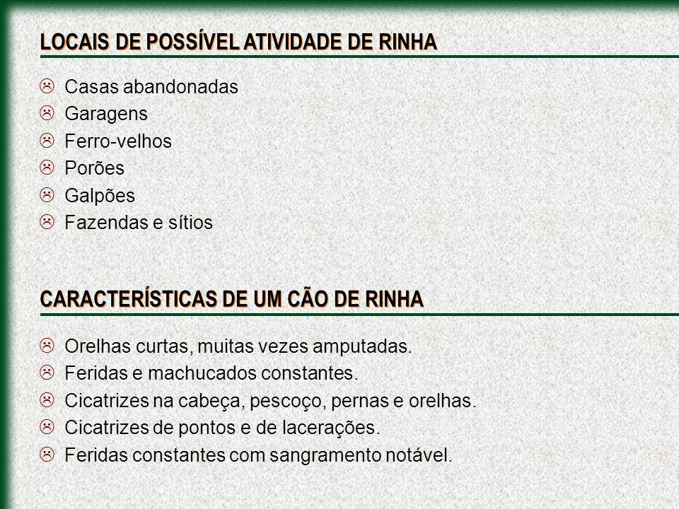 LOCAIS DE POSSÍVEL ATIVIDADE DE RINHA
