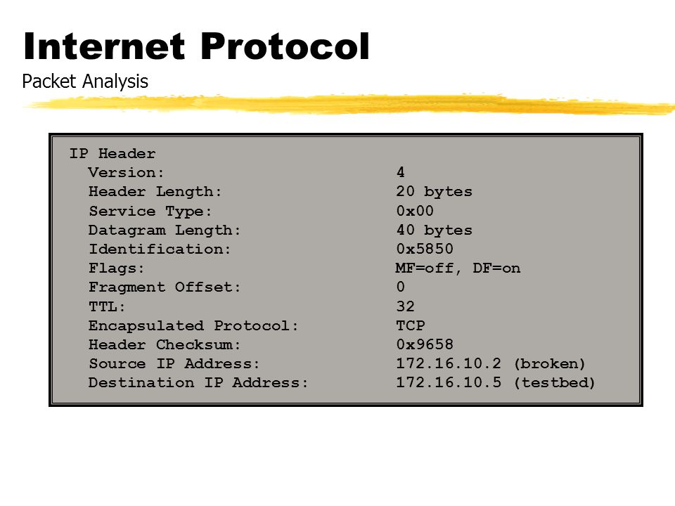 Internet Protocol Packet Analysis