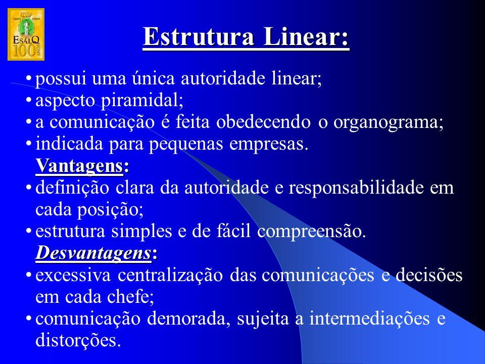 Estrutura Linear: possui uma única autoridade linear;