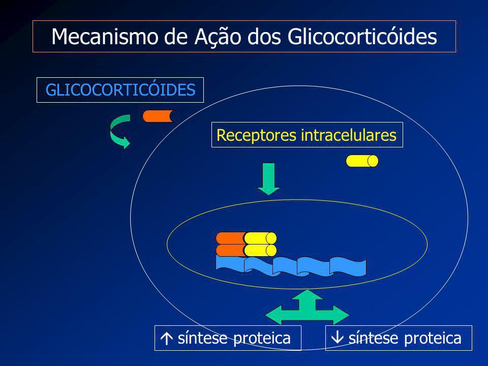 Mecanismo de Ação dos Glicocorticóides