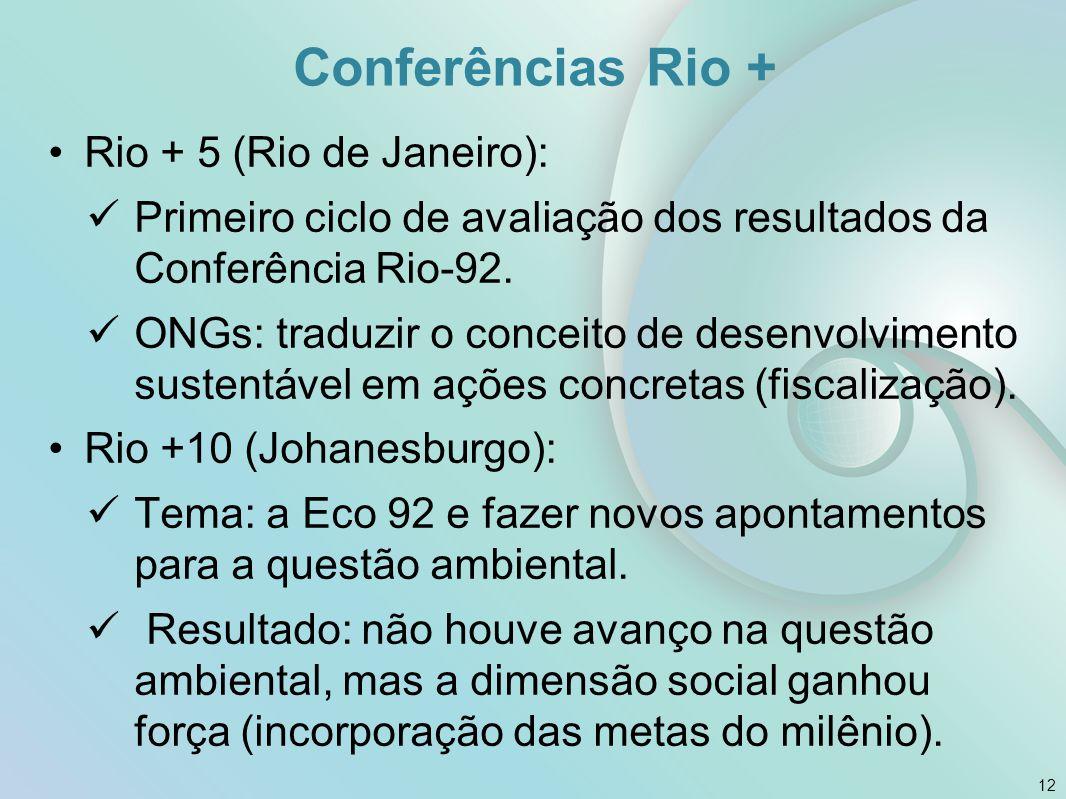 Conferências Rio + Rio + 5 (Rio de Janeiro):