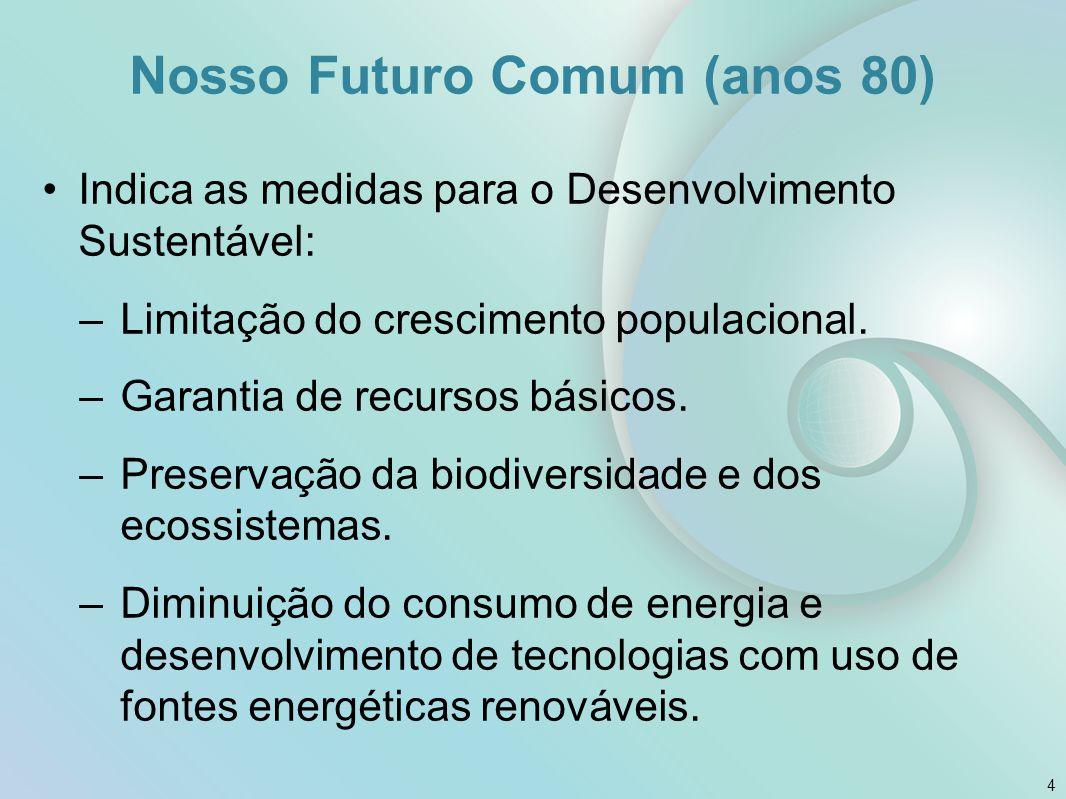 Nosso Futuro Comum (anos 80)