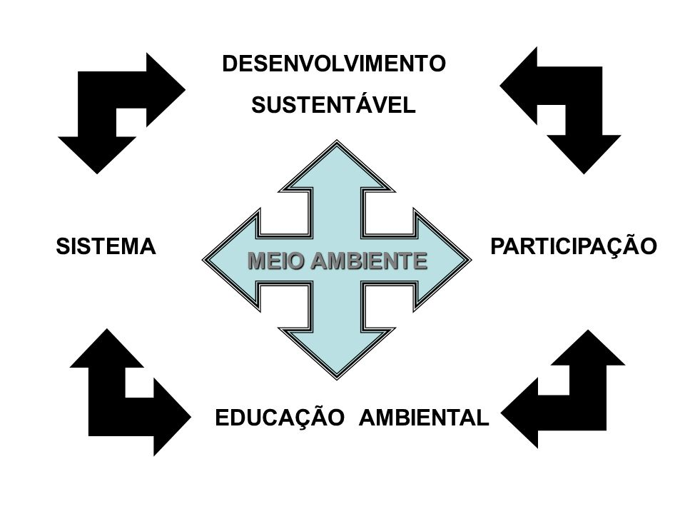 DESENVOLVIMENTO SUSTENTÁVEL MEIO AMBIENTE SISTEMA PARTICIPAÇÃO EDUCAÇÃO AMBIENTAL