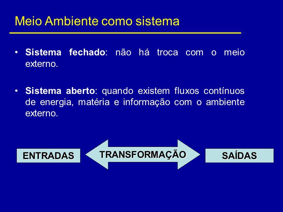 Meio Ambiente como sistema