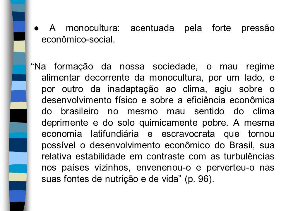 ● A monocultura: acentuada pela forte pressão econômico-social.