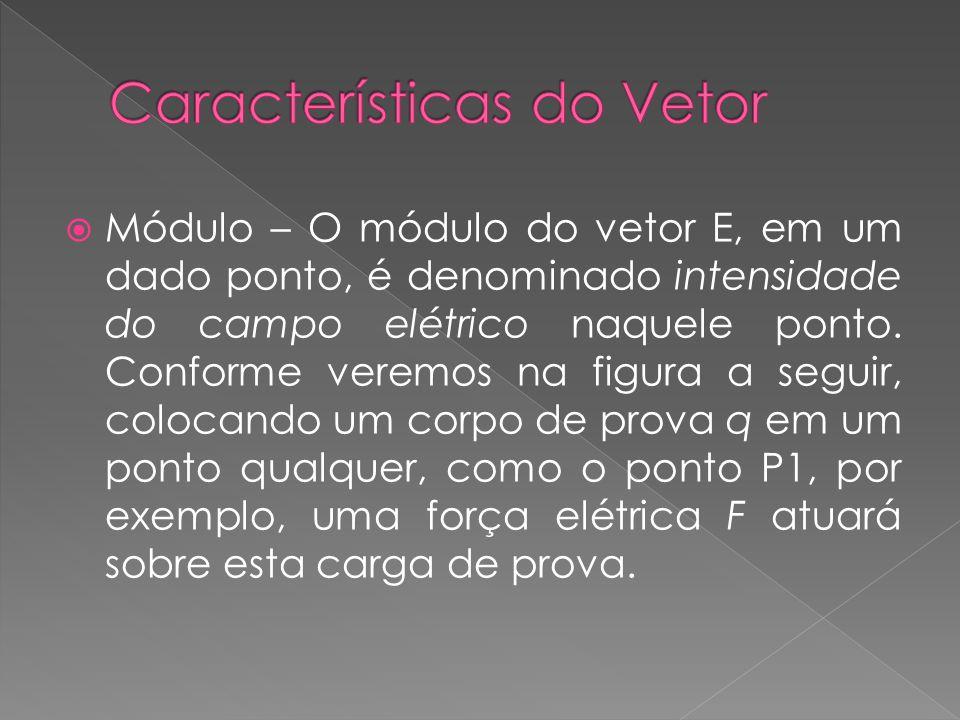 Características do Vetor