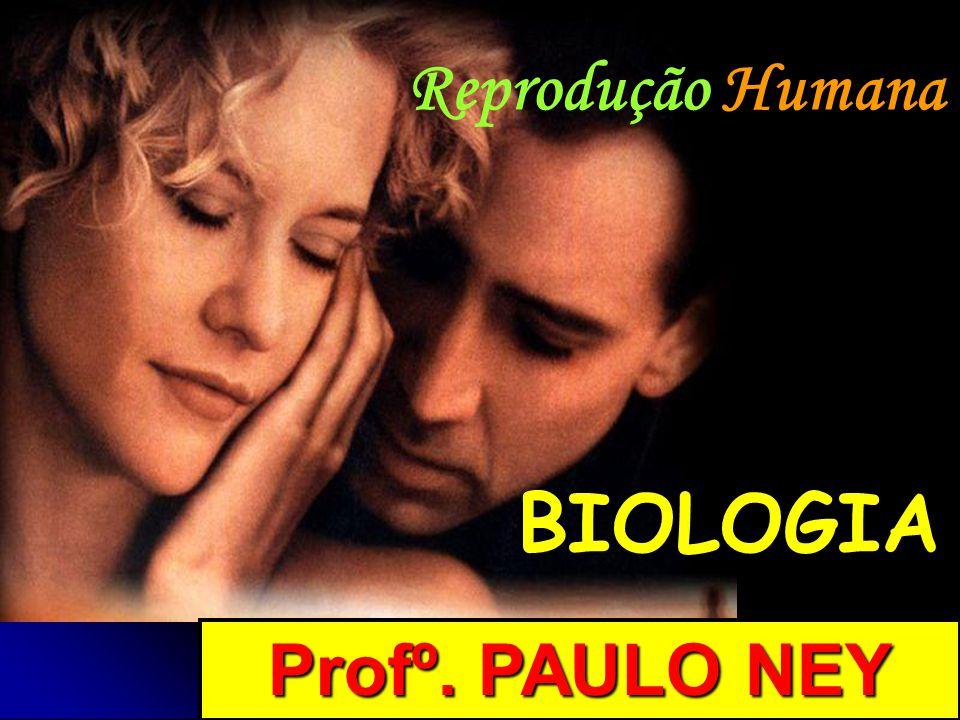 Reprodução Humana BIOLOGIA Profº. PAULO NEY