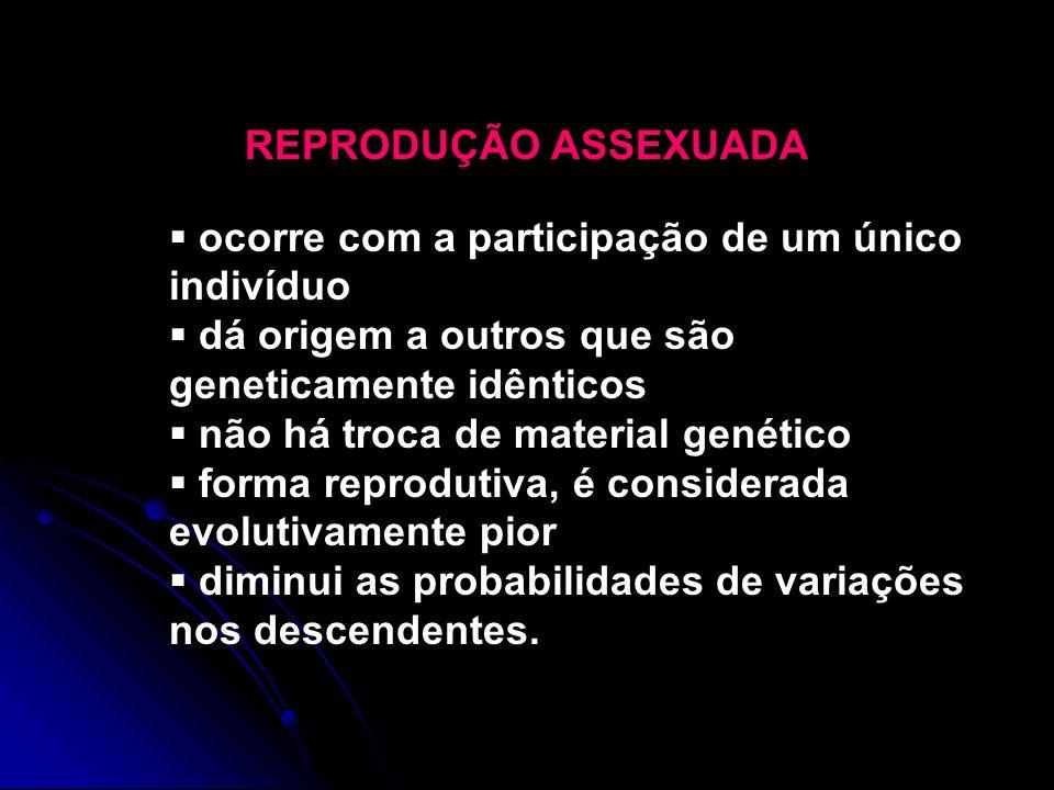 REPRODUÇÃO ASSEXUADA ocorre com a participação de um único indivíduo. dá origem a outros que são geneticamente idênticos.