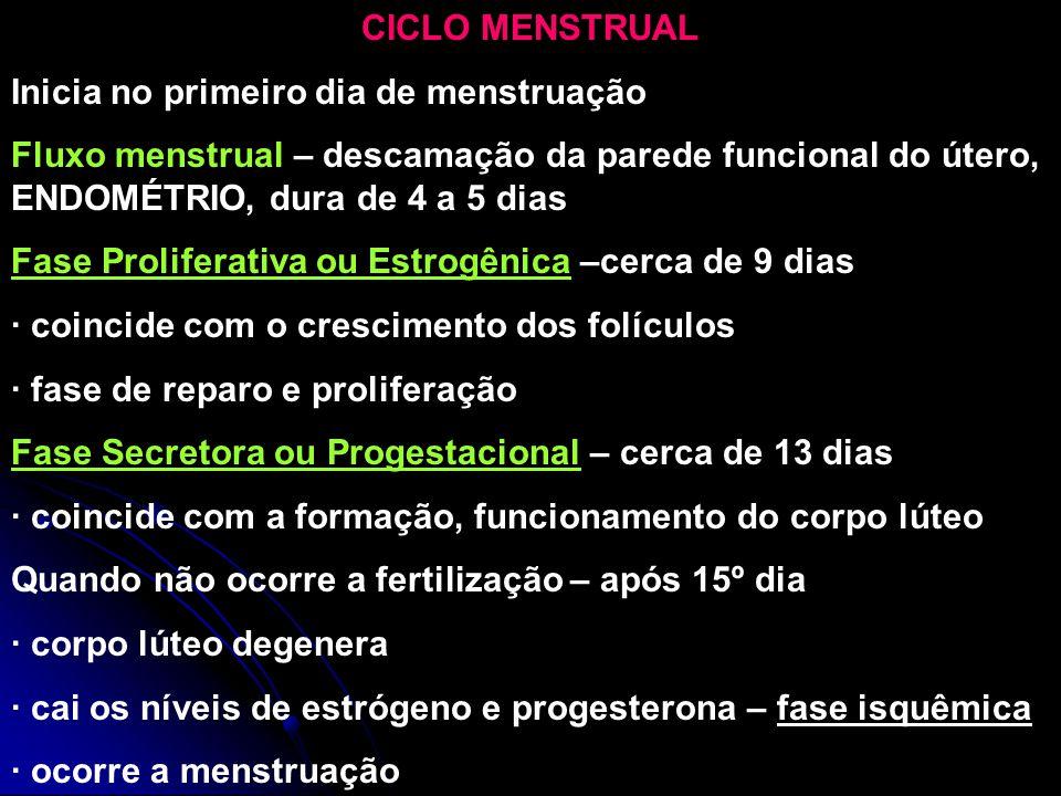 CICLO MENSTRUAL Inicia no primeiro dia de menstruação. Fluxo menstrual – descamação da parede funcional do útero, ENDOMÉTRIO, dura de 4 a 5 dias.