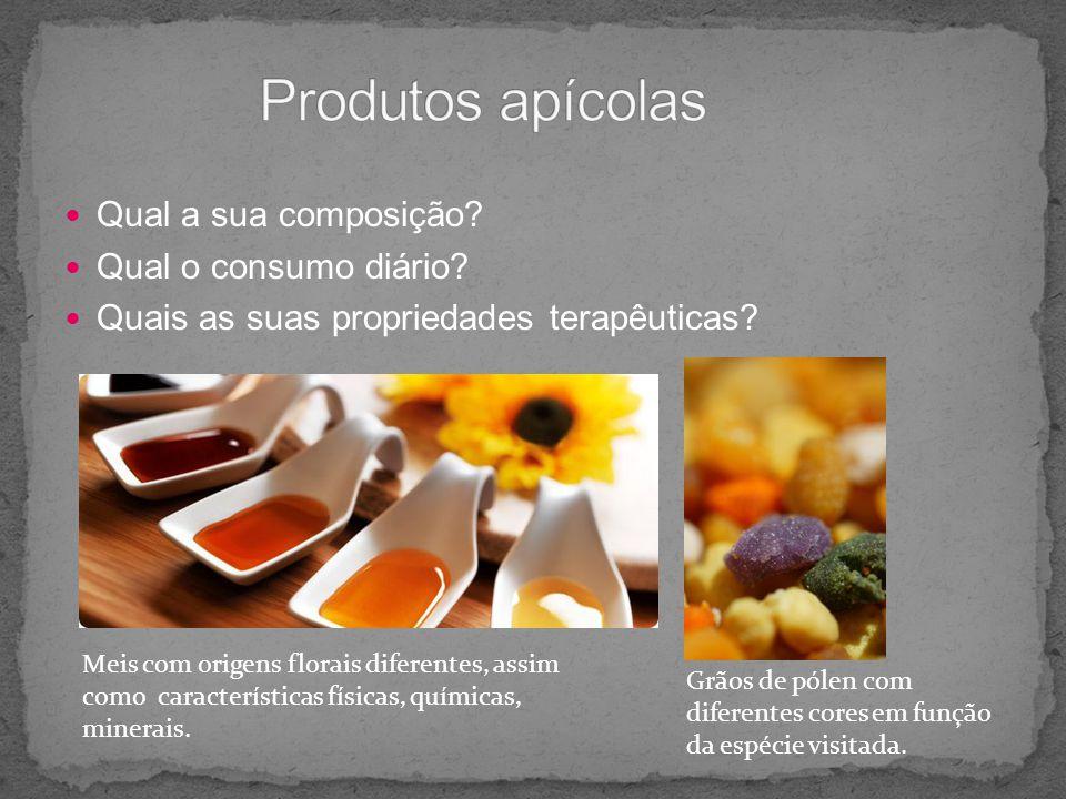 Produtos apícolas Qual a sua composição Qual o consumo diário