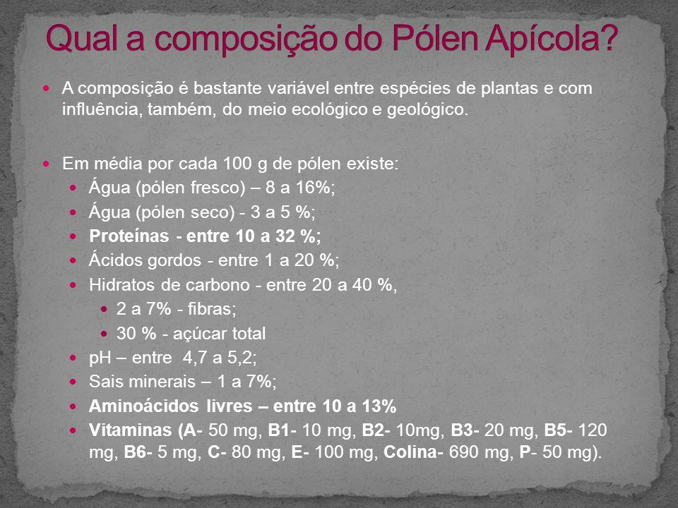 Qual a composição do Pólen Apícola