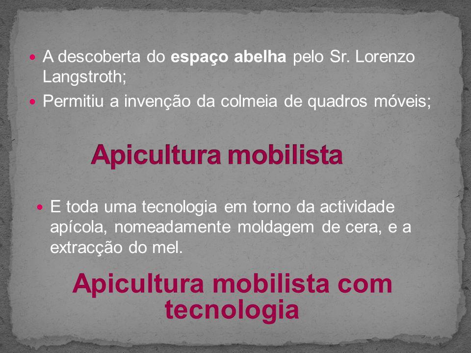 Apicultura mobilista com tecnologia