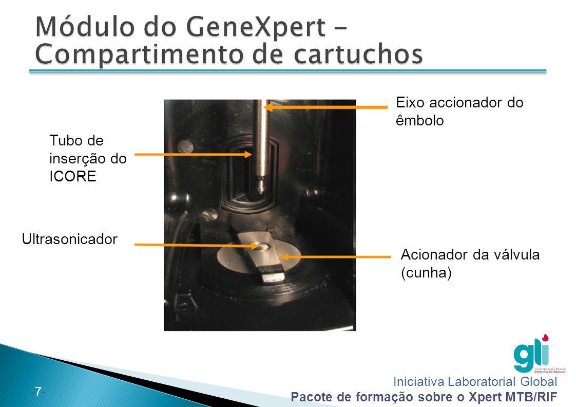 Módulo do GeneXpert - Compartimento de cartuchos
