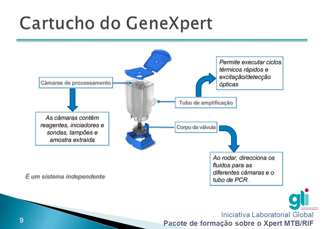 Cartucho do GeneXpert 9