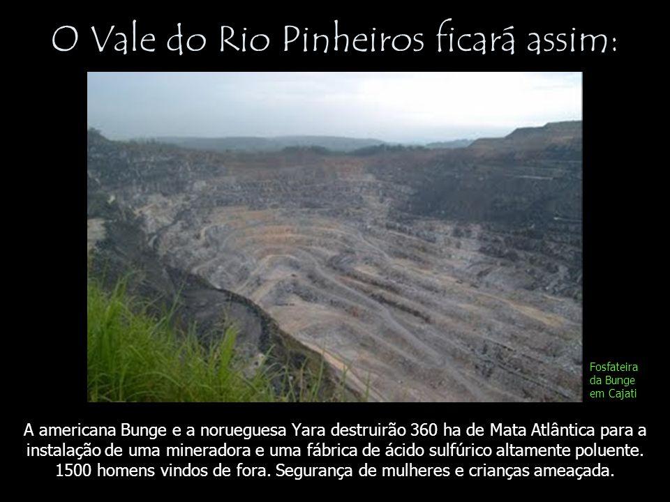 O Vale do Rio Pinheiros ficará assim: