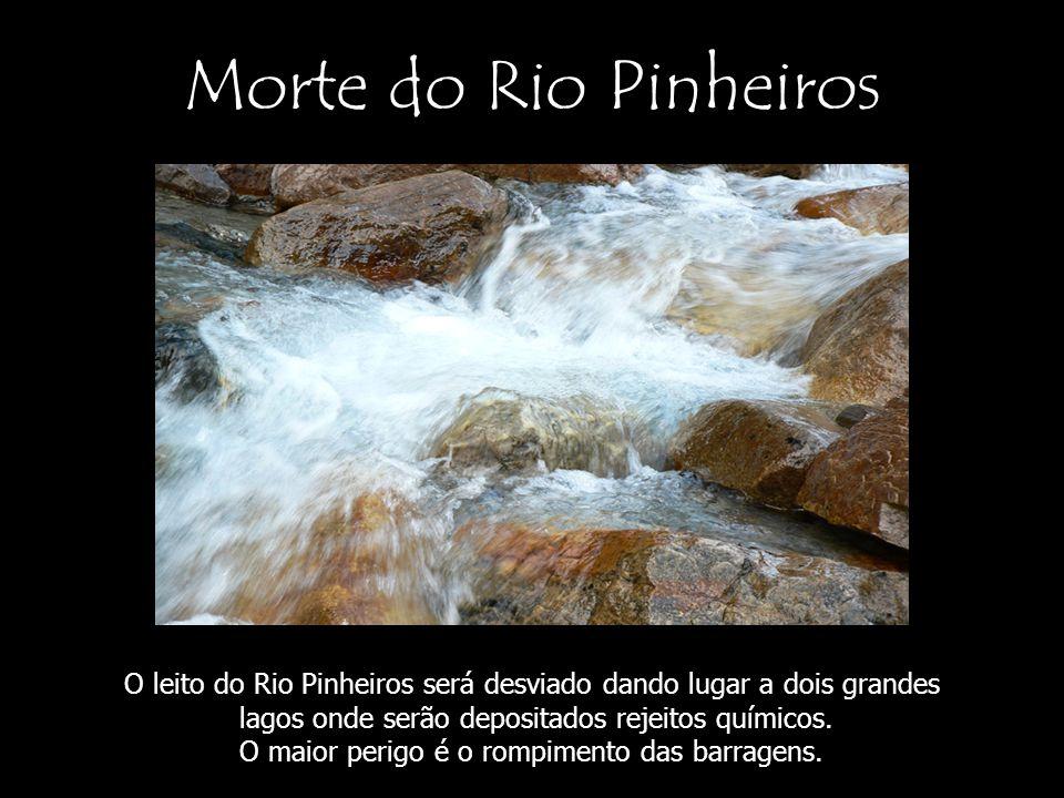 Morte do Rio Pinheiros O leito do Rio Pinheiros será desviado dando lugar a dois grandes. lagos onde serão depositados rejeitos químicos.