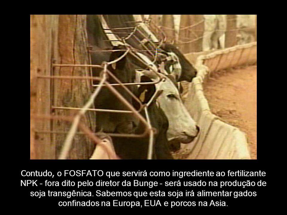 Contudo, o FOSFATO que servirá como ingrediente ao fertilizante