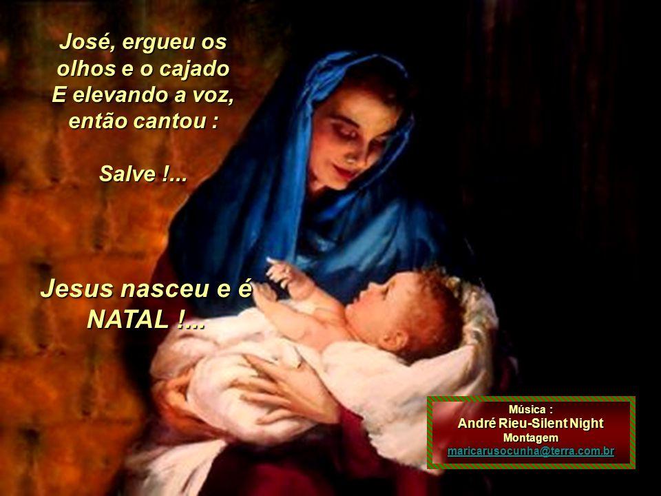 Jesus nasceu e é NATAL !... José, ergueu os olhos e o cajado