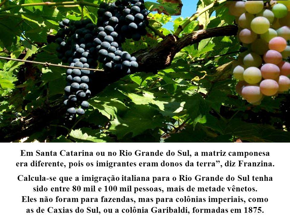 Em Santa Catarina ou no Rio Grande do Sul, a matriz camponesa