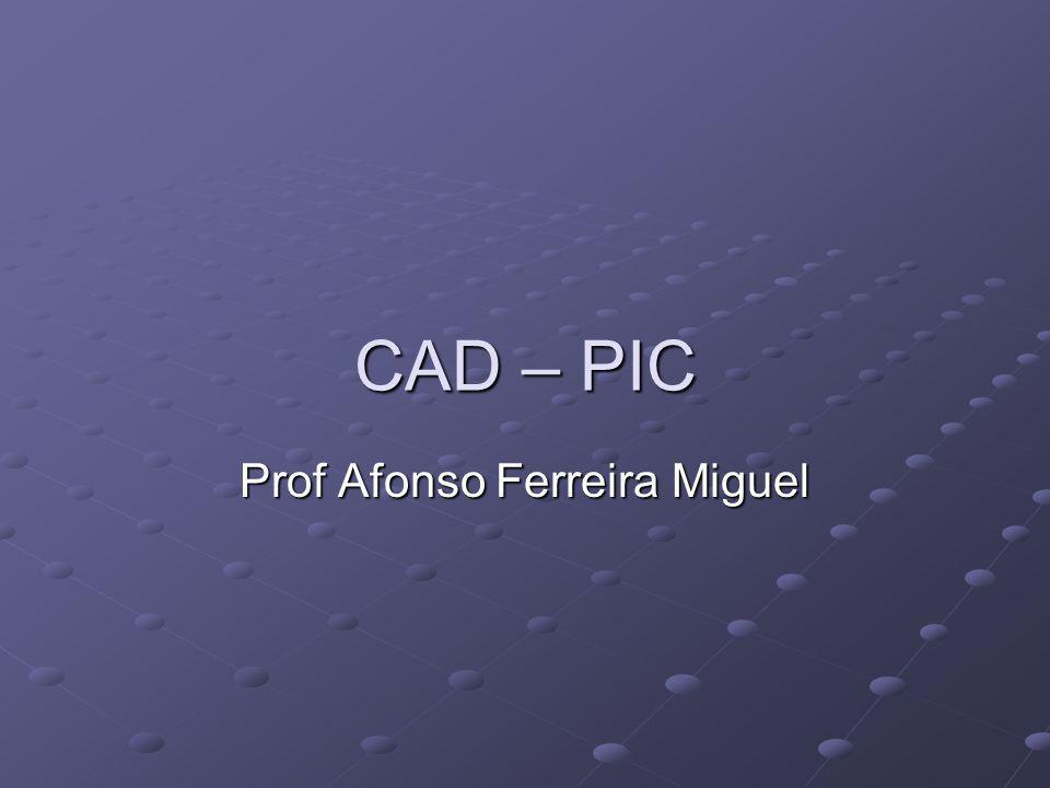 Prof Afonso Ferreira Miguel