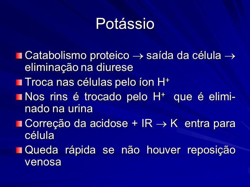 Potássio Catabolismo proteico  saída da célula  eliminação na diurese. Troca nas células pelo íon H+