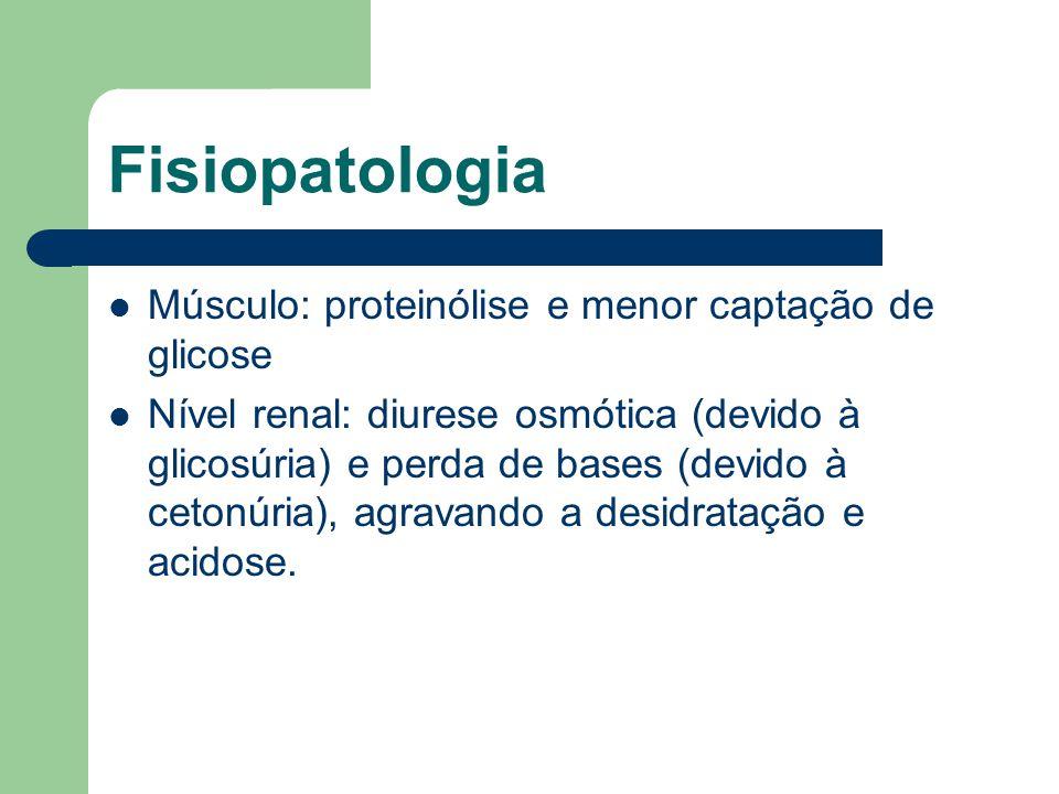 Fisiopatologia Músculo: proteinólise e menor captação de glicose