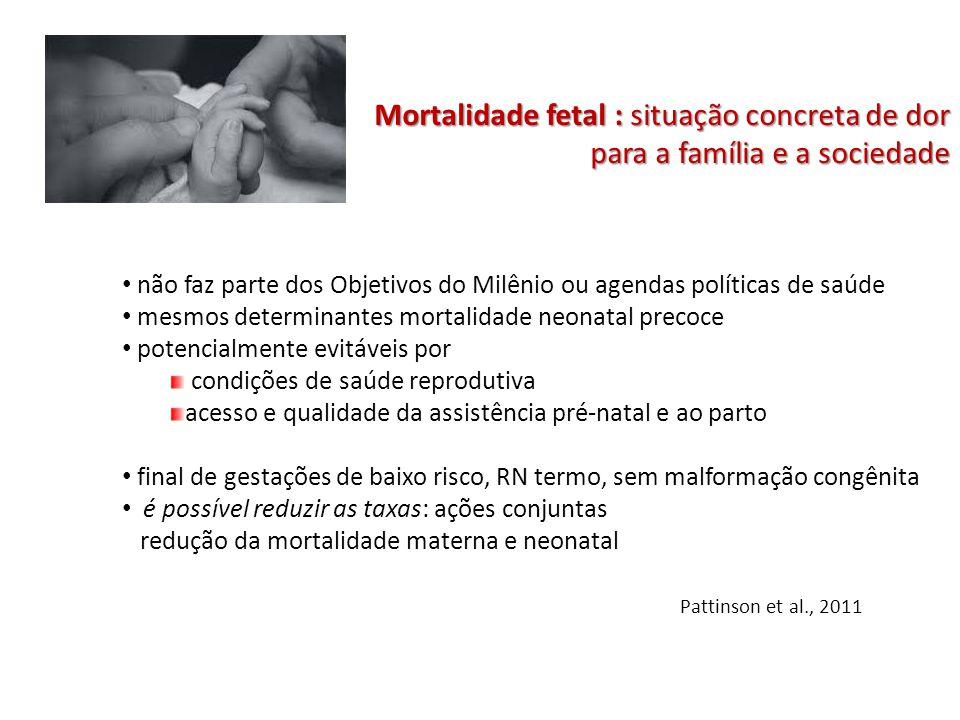 Mortalidade fetal : situação concreta de dor