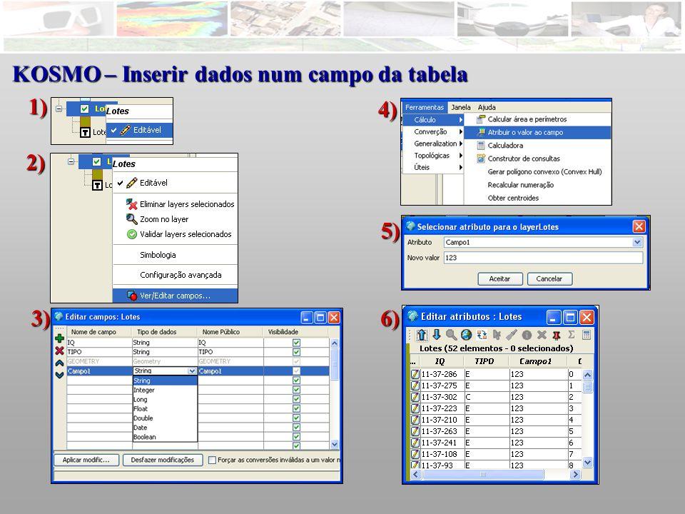 KOSMO – Inserir dados num campo da tabela