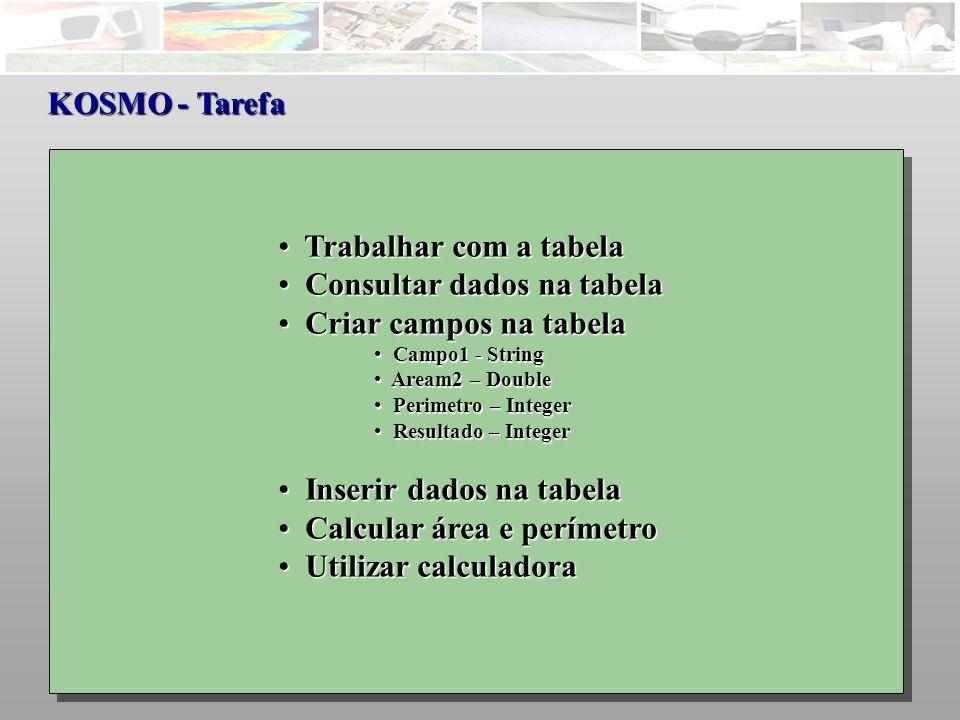Consultar dados na tabela Criar campos na tabela