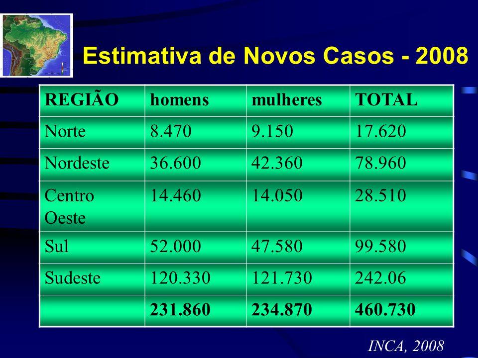 Estimativa de Novos Casos - 2008