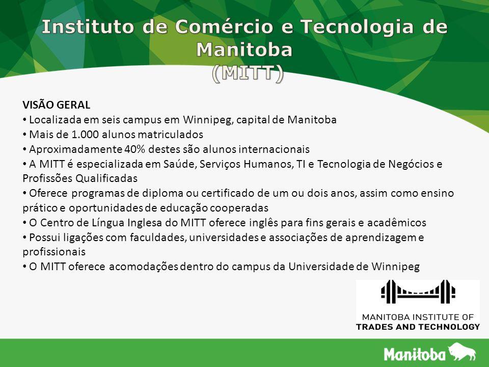 Instituto de Comércio e Tecnologia de Manitoba