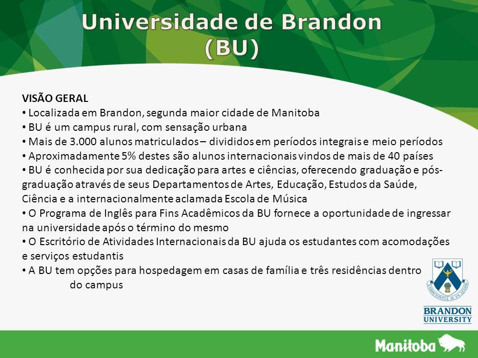 Universidade de Brandon